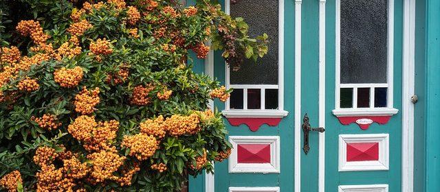הדלת המפורסמת מרחוב דאונינג 10 בבריטניה. הוחלפה ב-1991 בדלת מתכת חסינת פיצוצים
