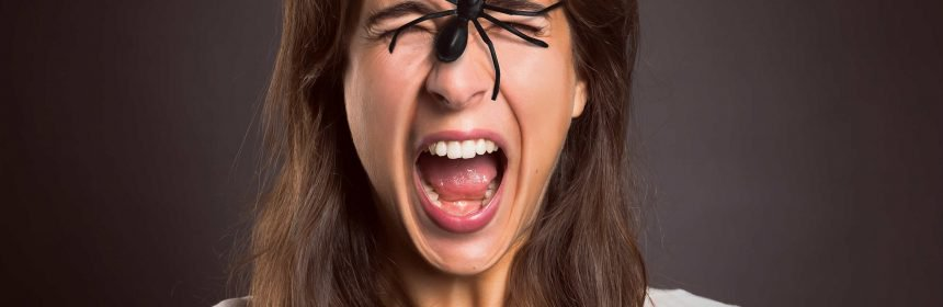 ישנם דרכים שונות להדברת עכבישים. נסו להרחיק את העכבישים על ידי ריחות דוחים